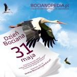 bocianopedia_pl.jpg